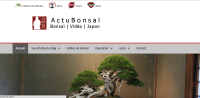 Japan Blog: Actu Bonsai