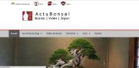 Japan Blog: Actu Bonsai